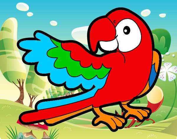 Animales Voladores Para Colorear