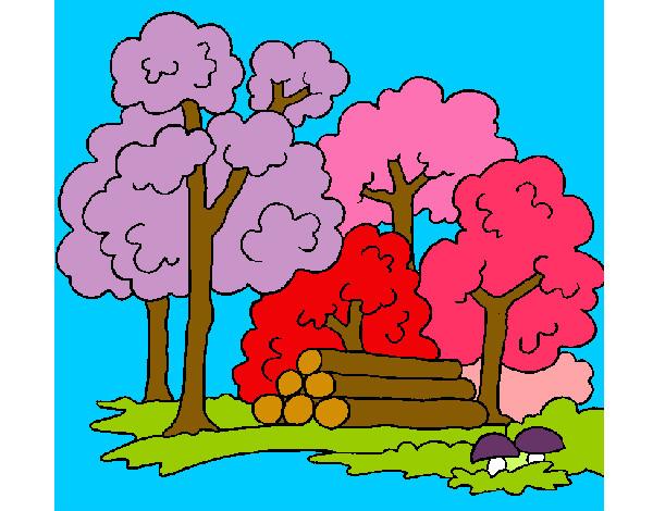 Dibujo de El Bosque a Color pintado por maxfaider en Dibujos.net ...