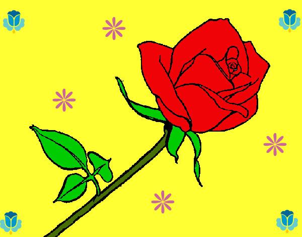 Dibujo de rosa linda pintado por Berrelleza en Dibujosnet el da