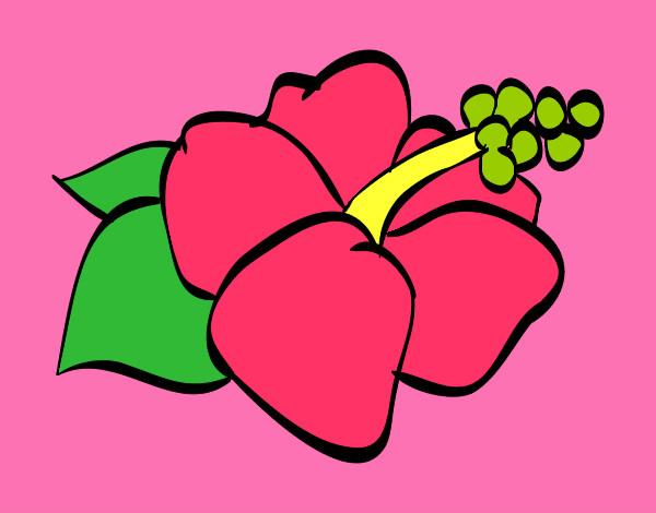 Dibujo de flor hawaiana pintado por Ladylazo en Dibujosnet el da