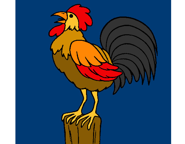 Dibujos Para Colorear Gallos De Pelea