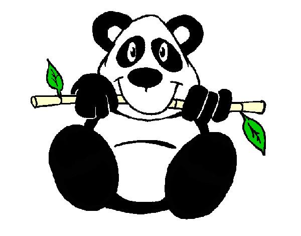 Dibujo de Oso panda pintado por Jjguti1616 en Dibujosnet el da