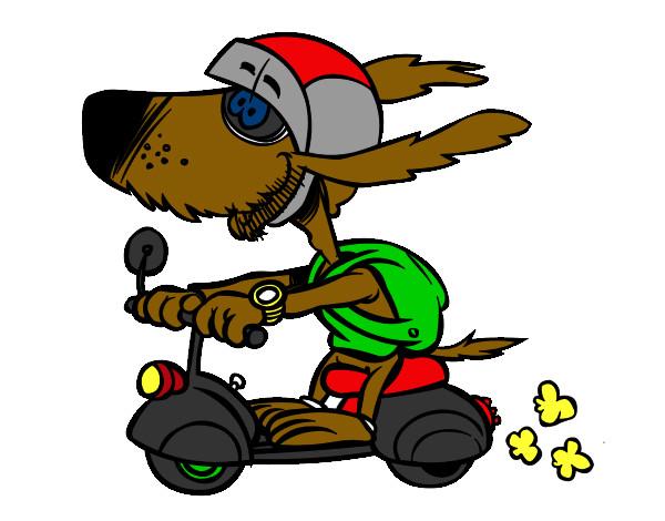 Dibujo de Perro motorista pintado por Boberto en Dibujosnet el