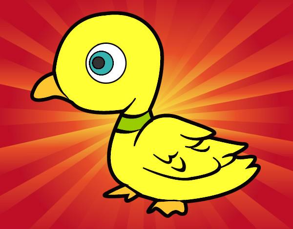 Dibujos De Patos Para Colorear Para Niños: Dibujos De Patos Para Colorear