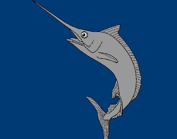 Dibujo de pez espada pintado por anaalanike en for Curiosidades del pez espada