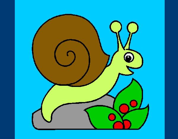 Dibujo de caracol pintado por Adrysweet en Dibujosnet el da 12