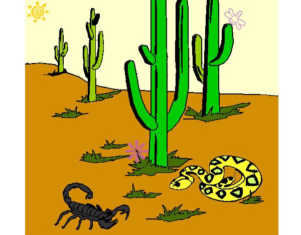 Dibujo de Desierto pintado por Pameluchis en Dibujosnet el da 05