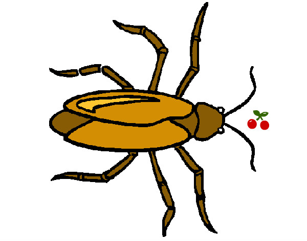 Dibujos de bichos para colorear - Fotos de insectos para imprimir ...