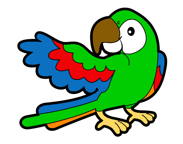Dibujos de Loros para Colorear  Dibujosnet