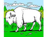 Dibujo Búfalo  pintado por jgojgjfdj