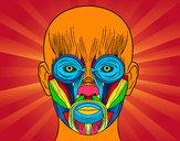Dibujo Músculos de la cara pintado por batman27