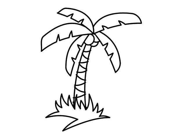 Dibujo de Palmera tropical pintado por Charlycar en Dibujos.net el ...