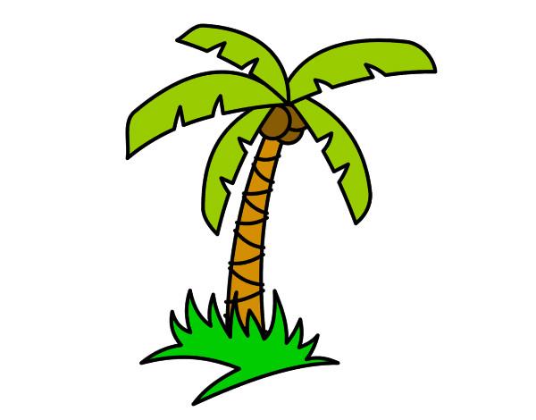 Dibujo de Palmera tropical pintado por Gusanobel en Dibujosnet el