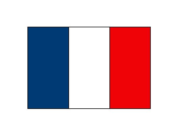 Dibujo de Francia pintado por Axelrito en Dibujos.net el día 19-10 ...