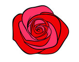 Dibujo Flor de rosa pintado por valen10324