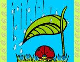 Dibujo Mariquita protegida de la lluvia pintado por dianita12