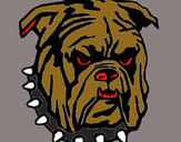 Dibujo Bull dog pintado por C-kan