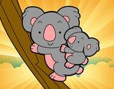 Dibujo Madre koala pintado por 21-09Lulu