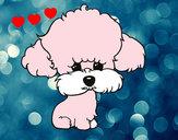 Dibujo Cachorro de poodle pintado por luzelenara