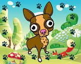 Dibujo Chihuahua pintado por IlMigliore