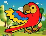 Dibujo Loro con ala abierta pintado por Rabagoz