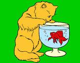 Dibujo Gato mirando al pez pintado por holiwis