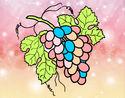 Dibujo Racimo de uvas pintado por Mariadelca