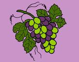 Dibujo Racimo de uvas pintado por queyla