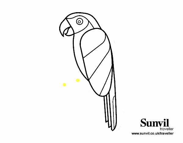 Pájaro Guacamayo