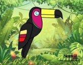 Pájaro Tucán