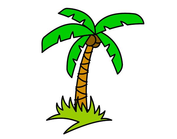 Dibujo de Palmera tropical pintado por Karolitai en Dibujos.net el ...