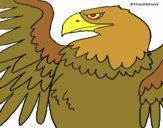 Dibujo Águila Imperial Romana pintado por david20125