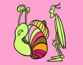 Grillo y Caracol