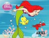 Dibujo La Sirenita - Ariel, Flounder y Sebastián pintado por karenivan