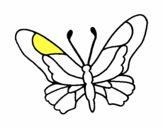 Mariposa 6a