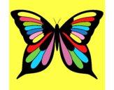 Mariposa 8