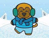 Mono en invierno