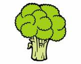 Verdura de brócoli