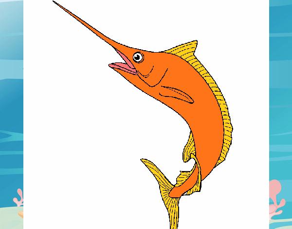 Dibujo de pez espada pintado por en el d a 13 for Curiosidades del pez espada