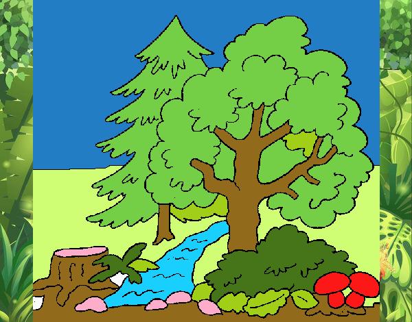 Dibujo de a cuidar la naturaleza pintado por en Dibujosnet el da