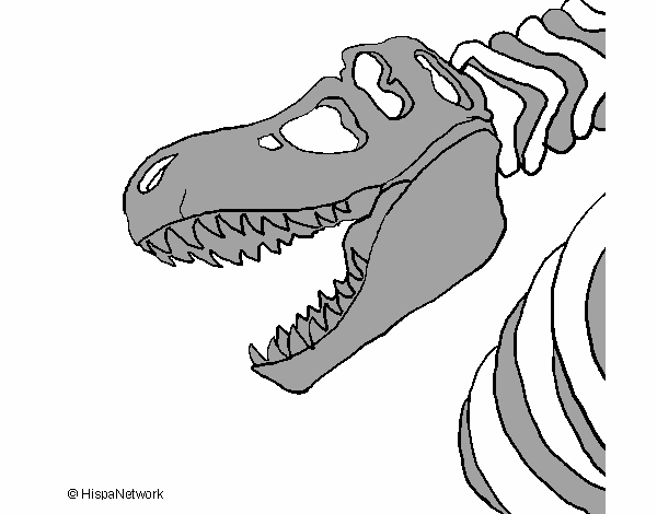 Rex Esqueleto. Nanoblock Dinosaurio Esqueleto Trex Mini