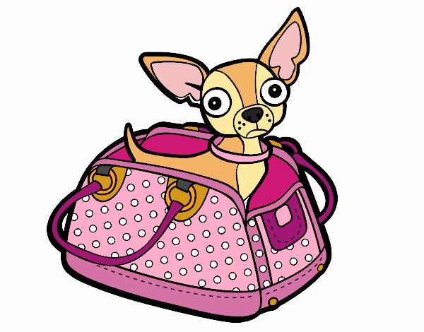 Dibujo De Chihuahua De Viaje Pintado Por Pusy En Dibujos