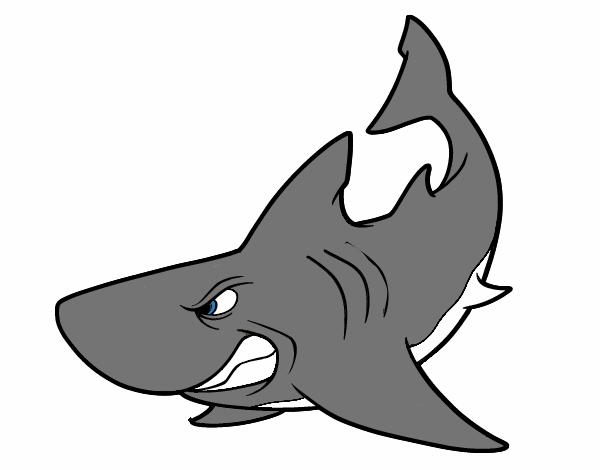 dibujo de tiburon pintado por metalicabr en dibujos net el sea creatures clipart sea creature clipart free black and white