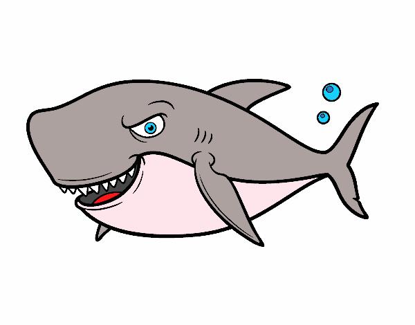 Dibujos Animados De Tiburones Para Colorear: Dibujo De Tiburón Dentudo Pintado Por Joseraul En Dibujos