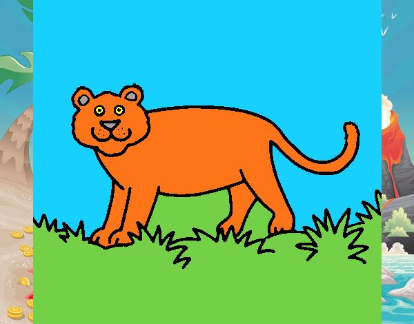 Dibujo De Pantera Pantera Colorear Dibujos Top Como: Dibujo De Pantera Pintado Por En Dibujos.net El Día 27-09