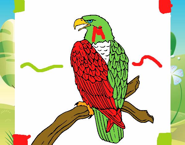 Dibujo de Aguila Mexicana pintado por en Dibujosnet el da 0110