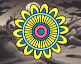 Mandala solar
