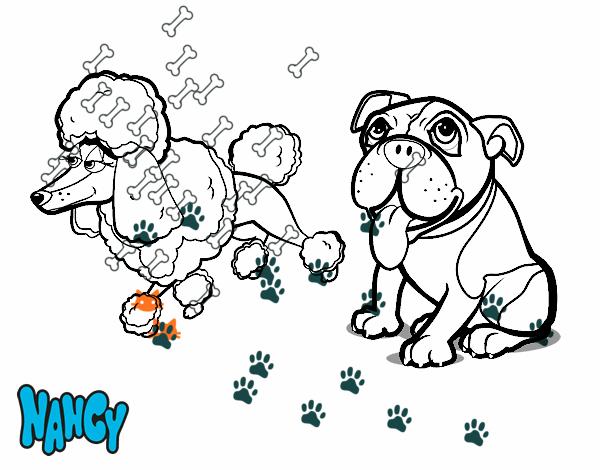Dibujo De Nancy Y Sus Amigos Para Colorear Dibujos Net