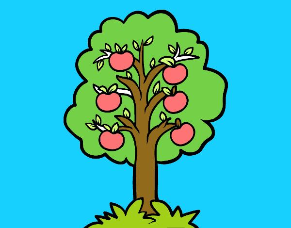 Dibujos Para Colorear De Arboles Frutales: Dibujo De Le Arbol Frutal Pintado Por En Dibujos.net El