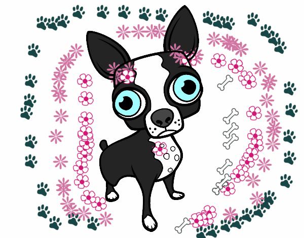 Dibujo De Chihuahua: Dibujo De Chihuahua Pintado Por En Dibujos.net El Día 16